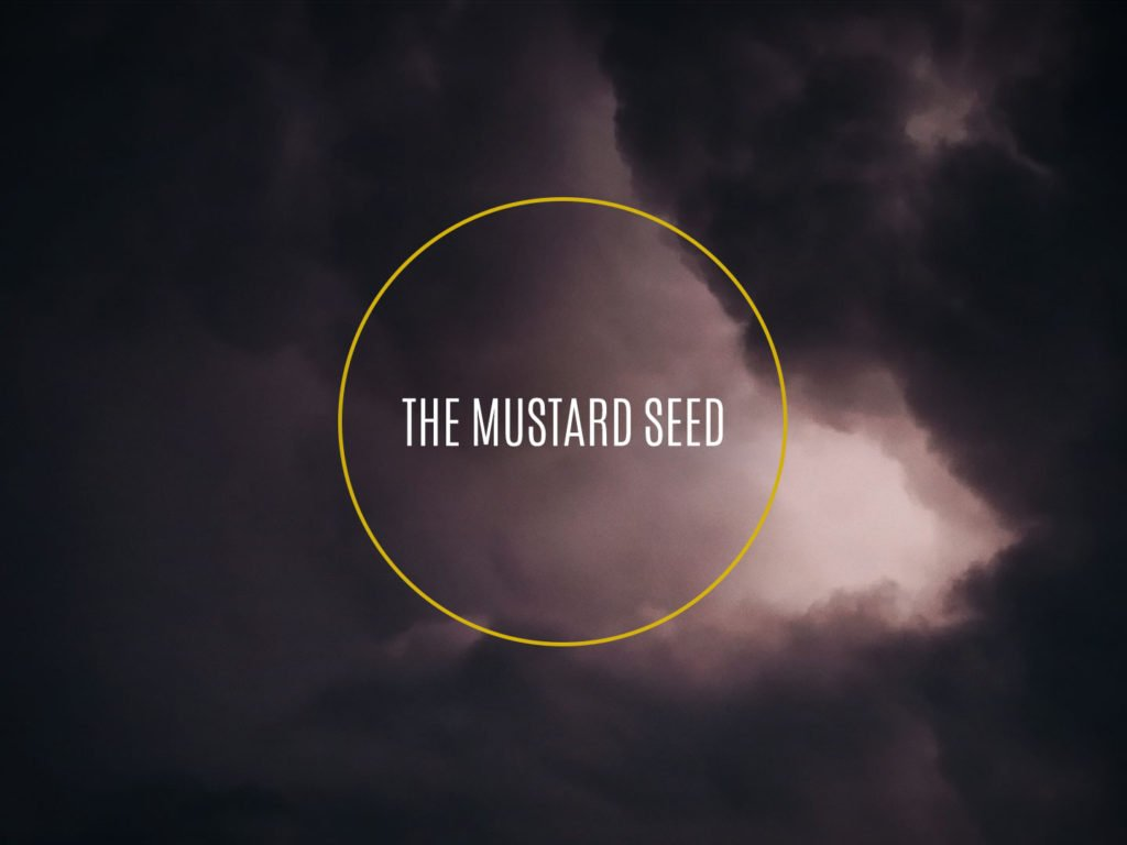 The Mustard Seed Film