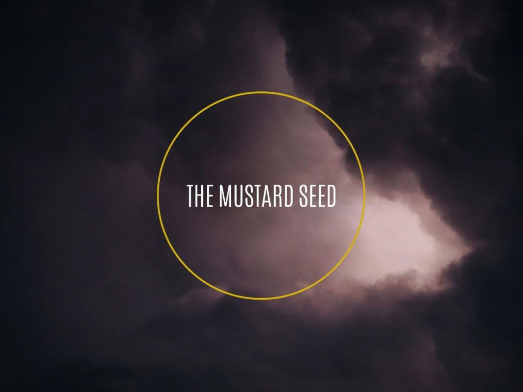The Mustard Seed Film